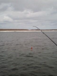 十勝川のアメマスの釣り方