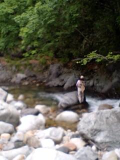 道南山岳渓流本流…