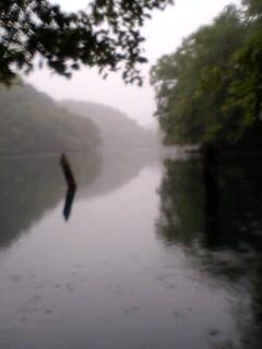 リザーバーの釣り