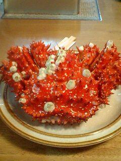 フジツボに侵された花さきガニ…