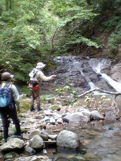 またまた、新規開拓の渓…