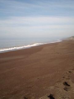 プライベートビーチ…