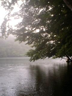 土砂降りの雨の中…