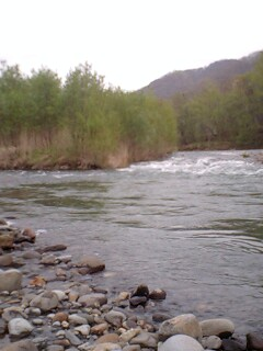 ダメもと河川にて…