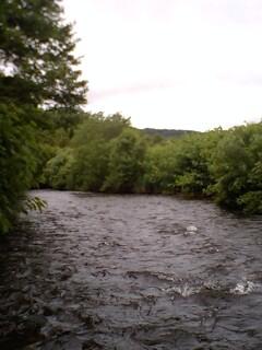 ダチョウの渓へ…