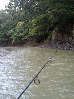 ミノーのサスペンド釣法…