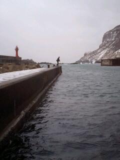 漁港の攻防…