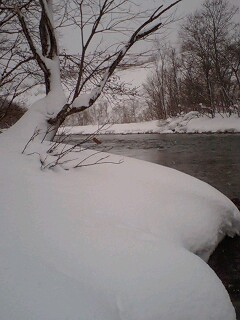 厳寒期の本流アメマス…