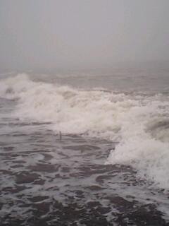 波打ち際の攻防…