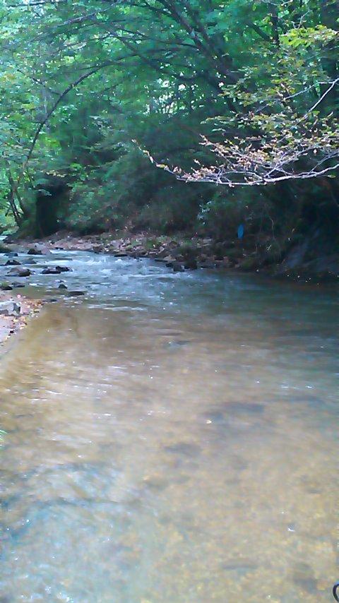 道南山岳渓流を遡る…