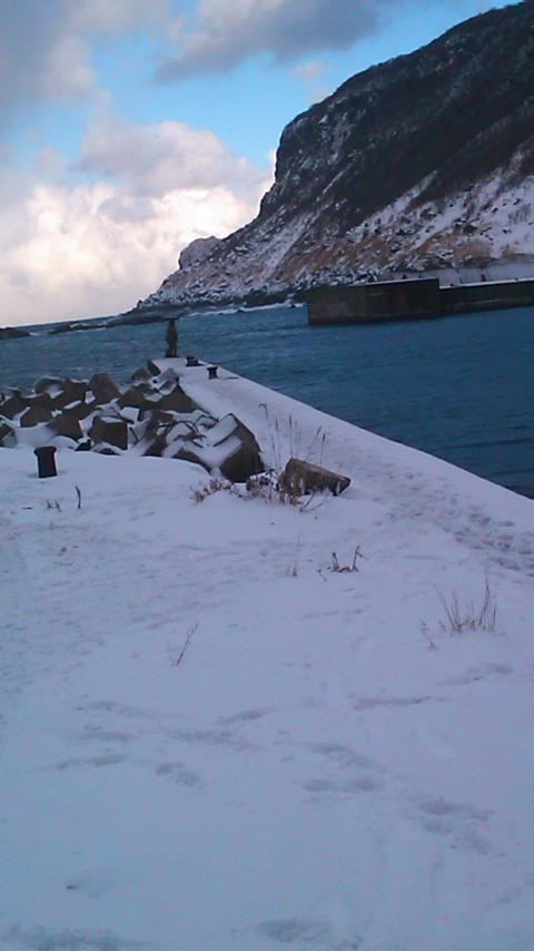須築漁港…