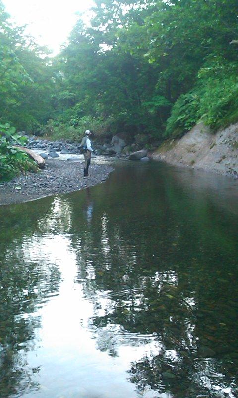 山岳渓流で、遡上アメマスを狙う…