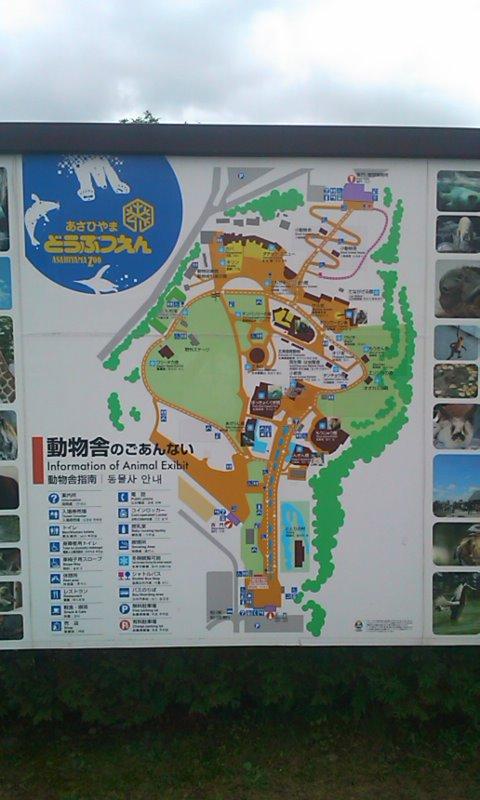 旭山動物園へ…