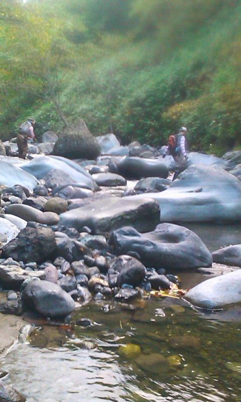 アメマス群れ遊ぶ渓にて…