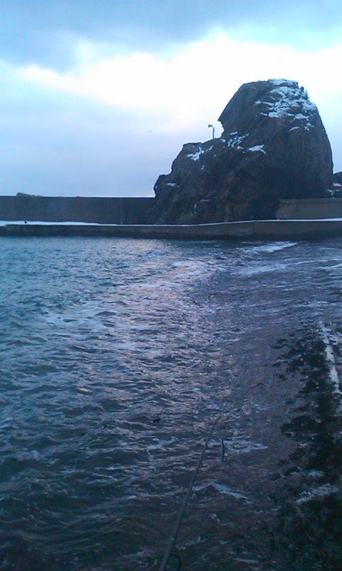 私的、日本海海アメ開幕…