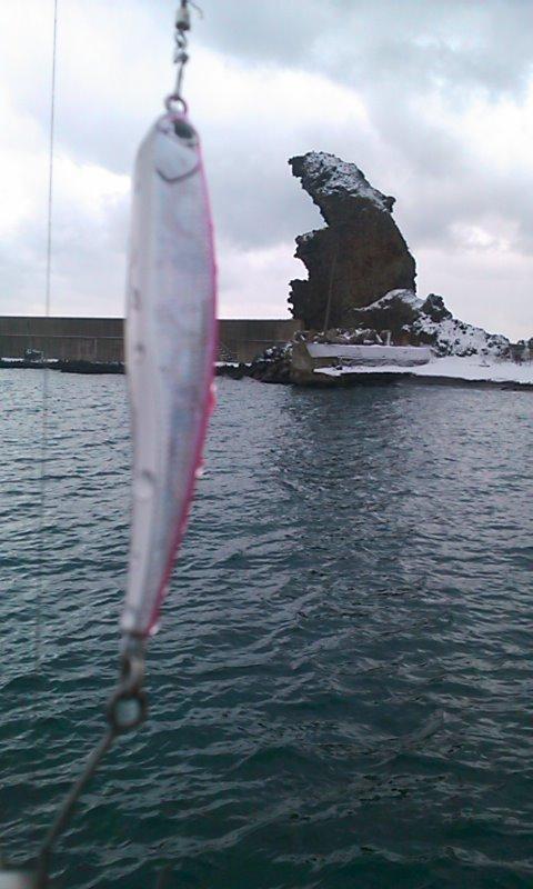 漁港巡り…