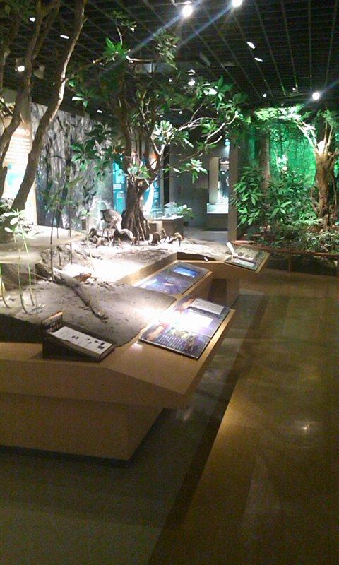 鹿児島博物館…