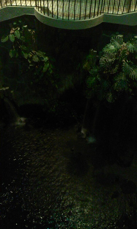 指宿温泉…