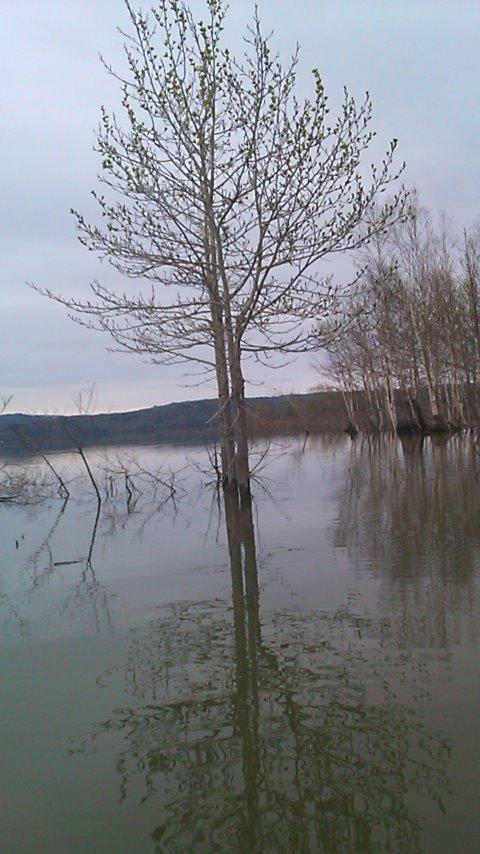 朱鞠内湖へ…