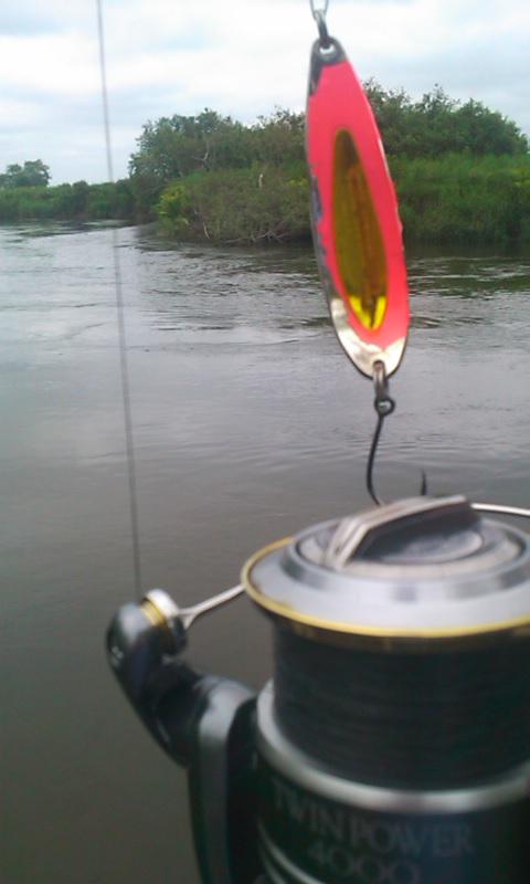 釧路川を釣る…