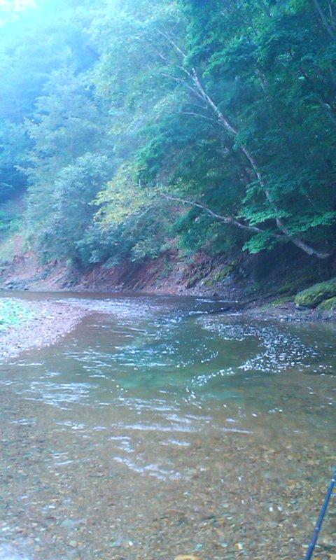 道東平野河川でヤマメ釣り…