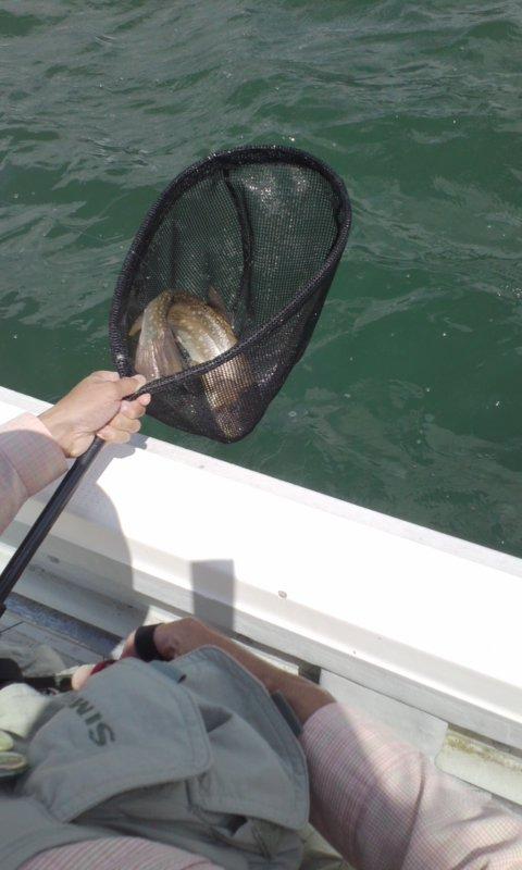 阿寒湖ディープな釣り…