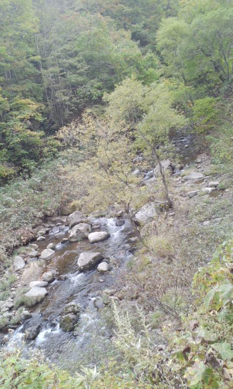 紅葉の渓をさまよう…