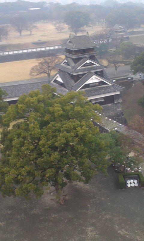 熊本城と熊本ラーメン…