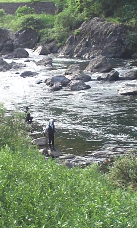 郡上八幡 長良川支流吉田川の鮎釣り…