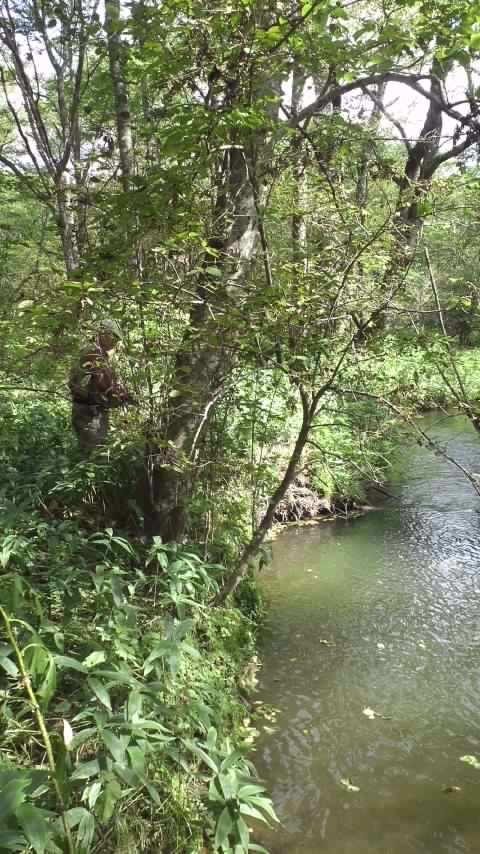 藪邸裏の渓…
