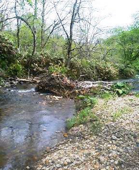 小さな川へ