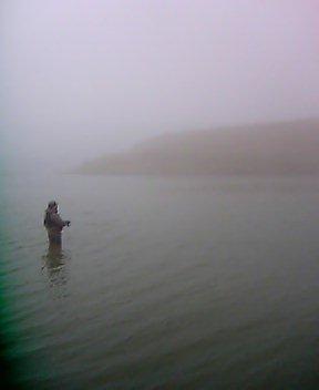 今日の釣り