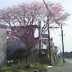 5oish0069.jpg