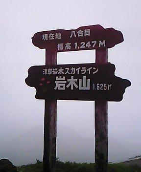 kzdsh0244.jpg