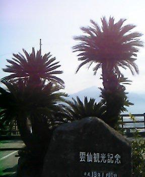 mv5sh0108.jpg